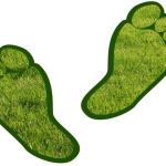 Garnica registers carbon footprint